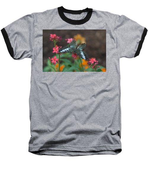 Clipper Butterfly 6150-052513-1cr Baseball T-Shirt