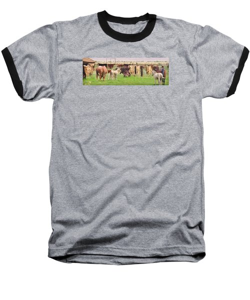 Baseball T-Shirt featuring the photograph Cow Hides by Marilyn Diaz
