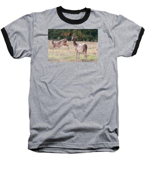 Deer At Paynes Prairie Baseball T-Shirt
