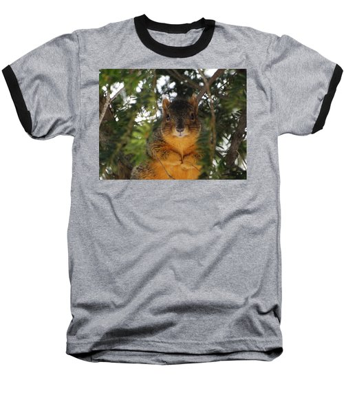 Eastern Fox Squirrel Baseball T-Shirt