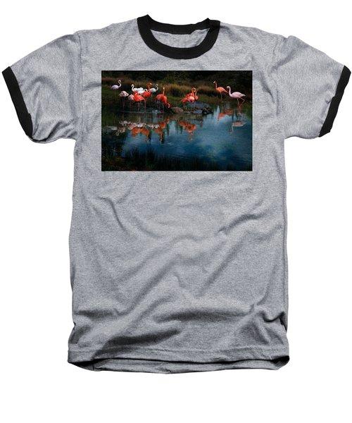 Flamingo Convention Baseball T-Shirt