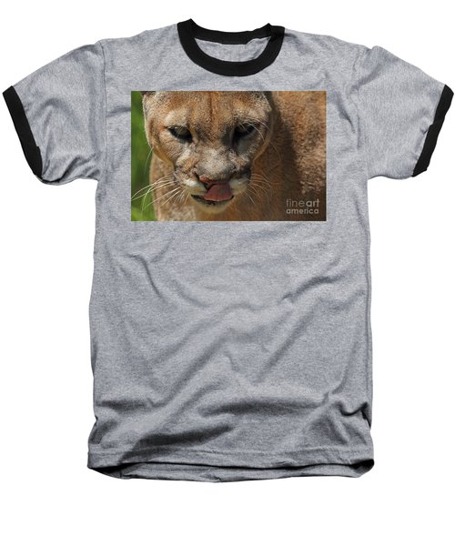 Baseball T-Shirt featuring the photograph Florida Panther by Meg Rousher