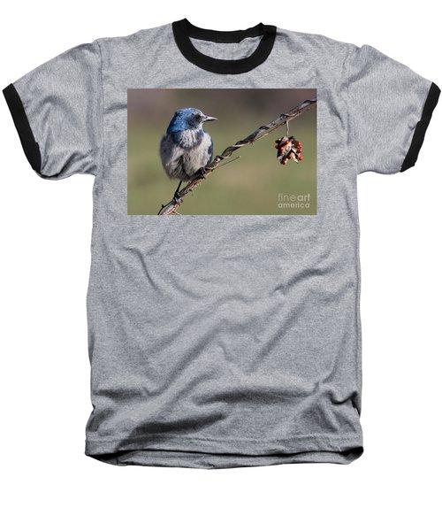 Florida Scrub Jay Baseball T-Shirt