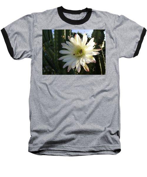 Baseball T-Shirt featuring the photograph Flowering Cactus 1 by Mariusz Kula