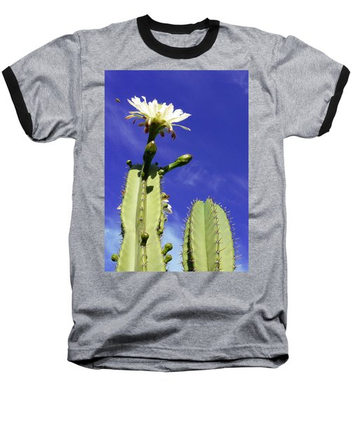 Flowering Cactus 2 Baseball T-Shirt
