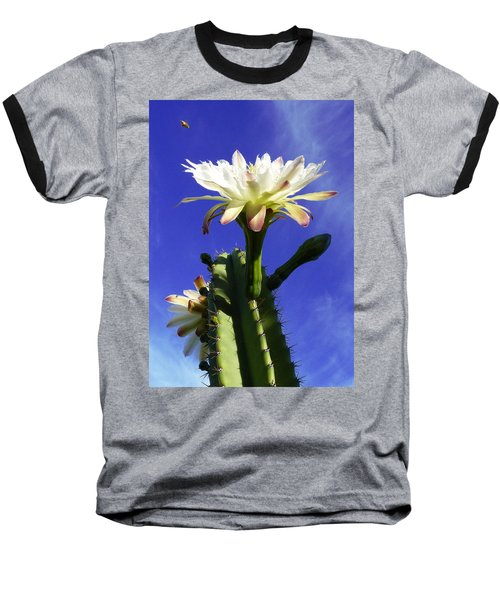 Flowering Cactus 3 Baseball T-Shirt