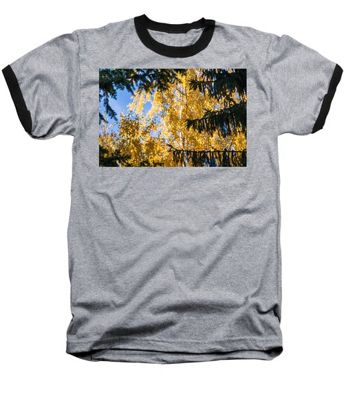 Forest Tale - Featured 3 Baseball T-Shirt