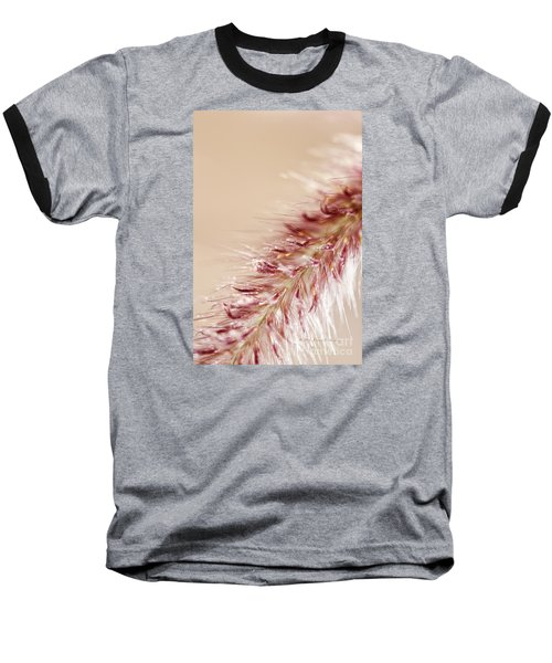 Fountain Grass Blooms   Baseball T-Shirt