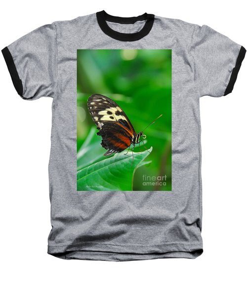 D5l15 Butterfly At Franklin Park Conservatory Baseball T-Shirt