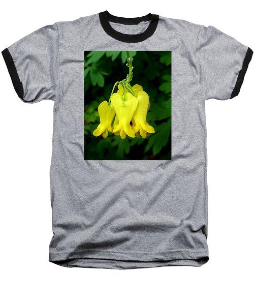 Golden Tears Vine Baseball T-Shirt by William Tanneberger