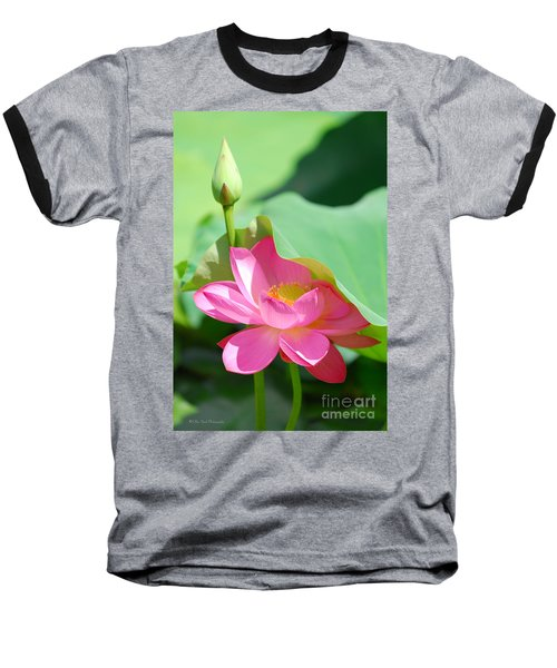 D48l-96 Water Lily At Goodale Park Photo Baseball T-Shirt