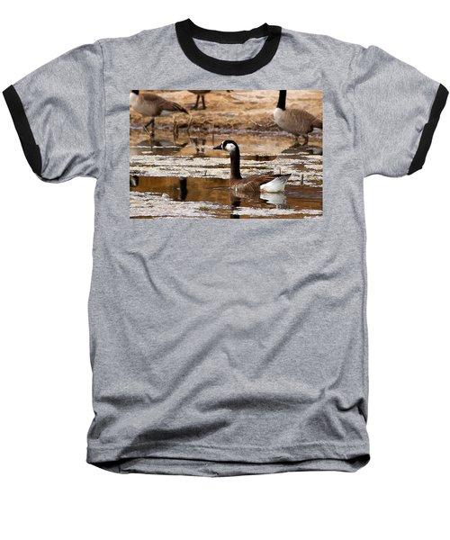 Goose Pond Baseball T-Shirt