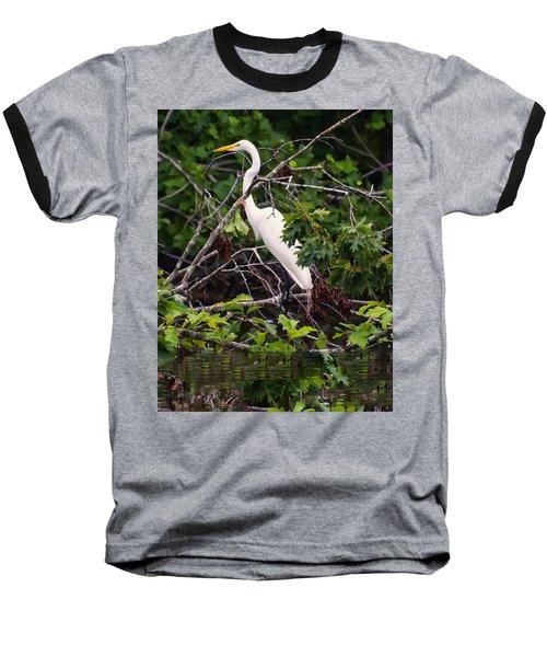 Great White Egret Baseball T-Shirt