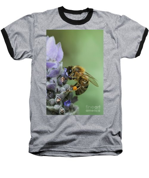 Baseball T-Shirt featuring the photograph Happy Bee by Joy Watson
