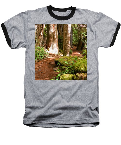 Hiking Trail Baseball T-Shirt