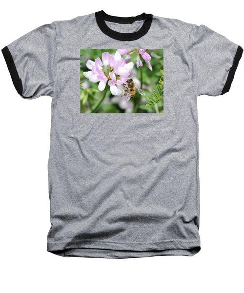 Honeybee On Crown Vetch Baseball T-Shirt by Lucinda VanVleck