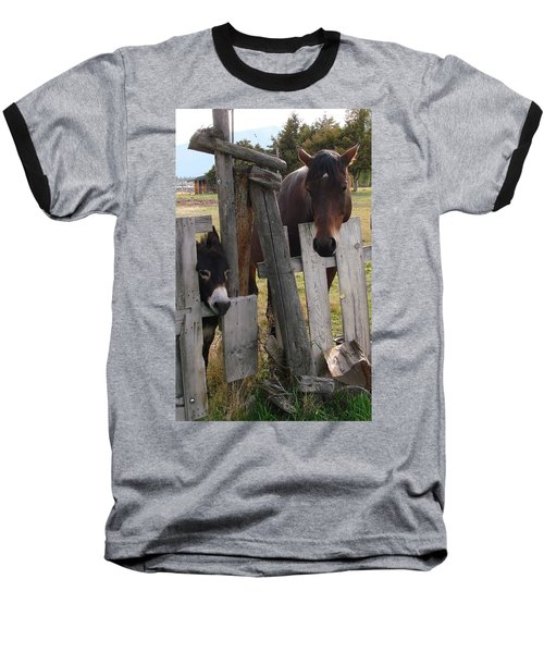 Baseball T-Shirt featuring the photograph Horsing Around by Athena Mckinzie