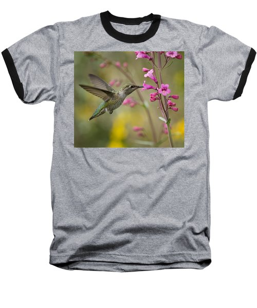 Hummingbird Heaven  Baseball T-Shirt