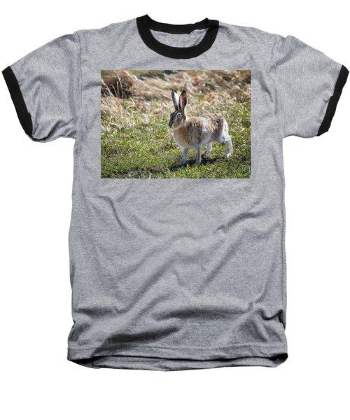 Jackrabbit Baseball T-Shirt