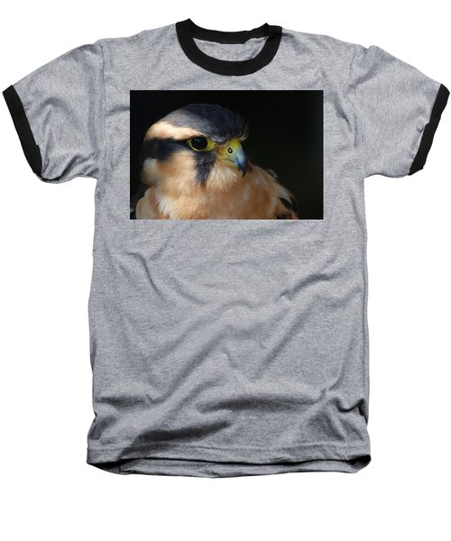 Kestrel Falcon Baseball T-Shirt
