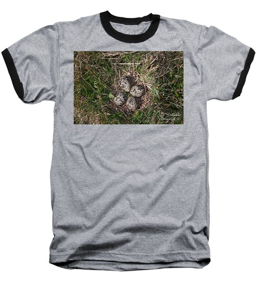 Lapwing Nest Baseball T-Shirt