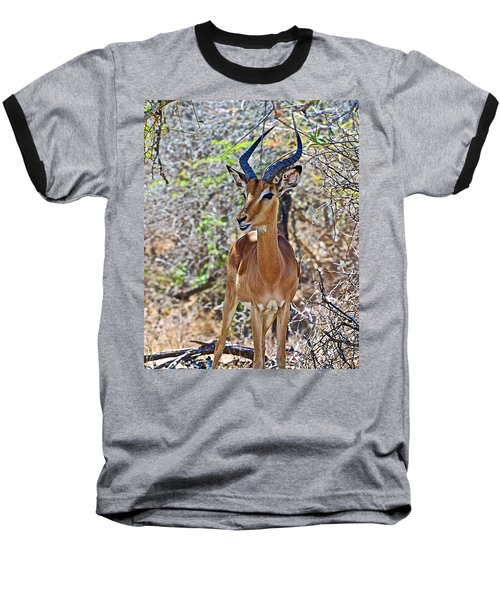 Male Impala In Kruger National Park-south Africa   Baseball T-Shirt