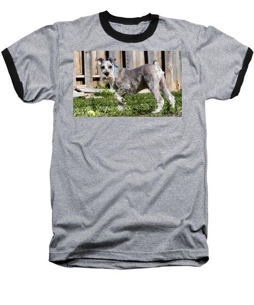 Miniature Schnauzer Baseball T-Shirt