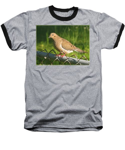 Morning Dove I Baseball T-Shirt