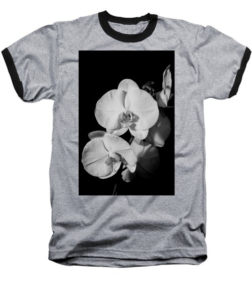 Moth Orchid Bw Baseball T-Shirt by Ron White
