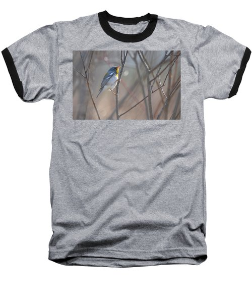 Northern Parula Baseball T-Shirt