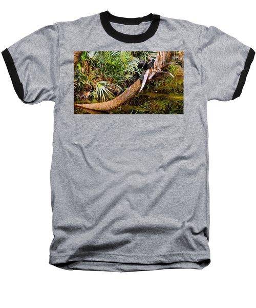 Oriental Darter Anhinga Melanogaster Baseball T-Shirt