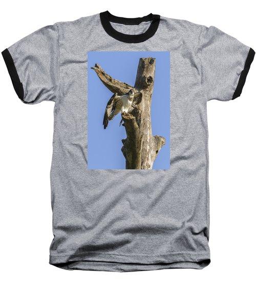 Osprey Pose Baseball T-Shirt