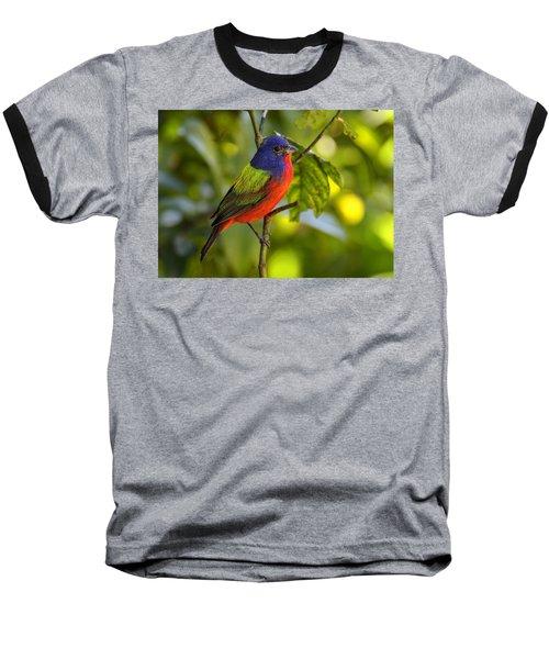 Painted Bunting Baseball T-Shirt