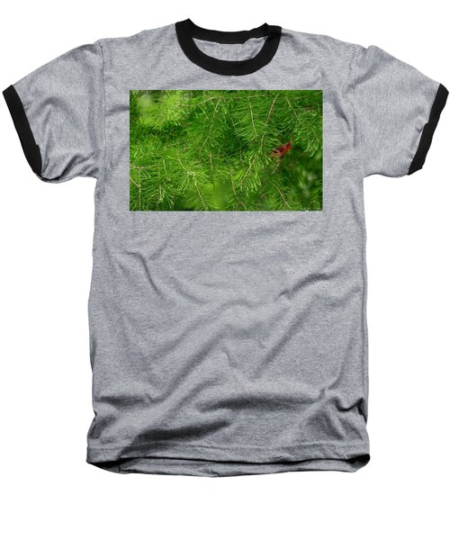 Baseball T-Shirt featuring the photograph Peek A Boo by Elizabeth Winter