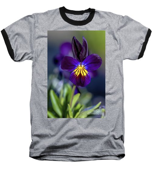 Purple Viola Baseball T-Shirt