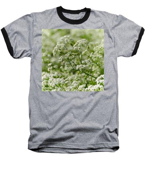 Queen Annes Lace Baseball T-Shirt