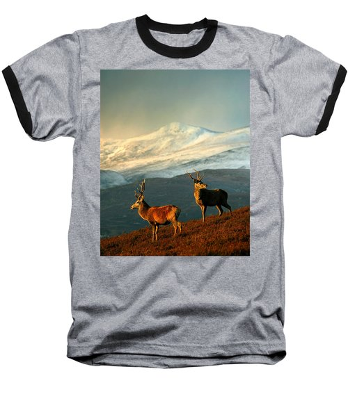 Red Deer Stags Baseball T-Shirt