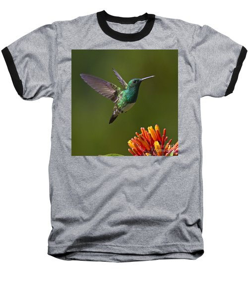 Snowy-bellied Hummingbird Baseball T-Shirt
