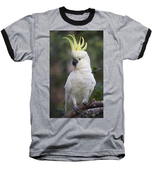 Sulphur-crested Cockatoo Displaying Baseball T-Shirt