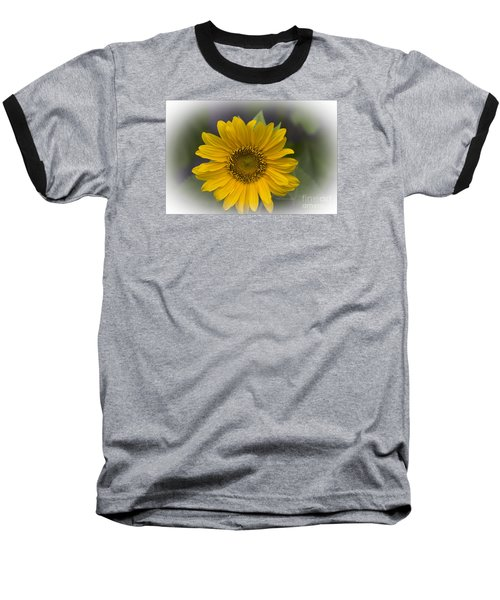 Sunflower Vr. 'dwarf Sunspot ' Baseball T-Shirt