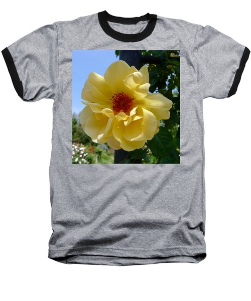 Sunny Yellow Rose Baseball T-Shirt