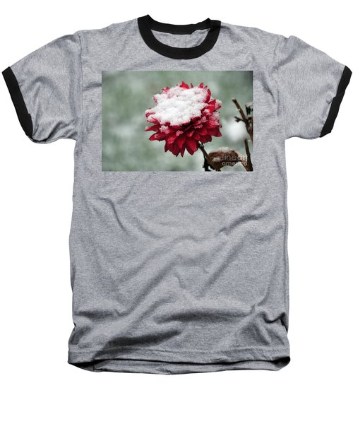 Survival Of The Fittest Baseball T-Shirt