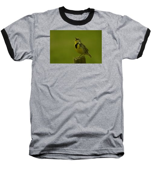 The Meadowlark Sings Baseball T-Shirt