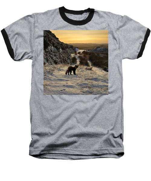 The Pine Marten's Path Baseball T-Shirt