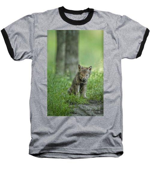Timber Wolf Pup Baseball T-Shirt