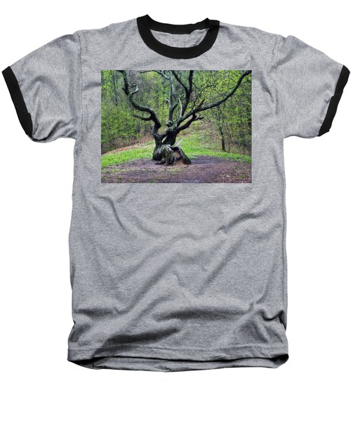 Tree In The Forest Baseball T-Shirt