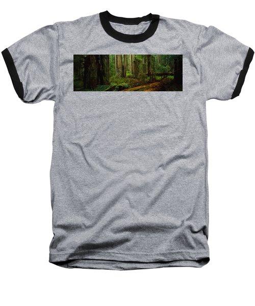 Trees In A Forest, Hoh Rainforest Baseball T-Shirt