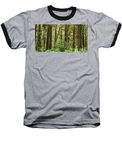 Trees In A Forest, Quinault Rainforest Baseball T-Shirt by Panoramic Images