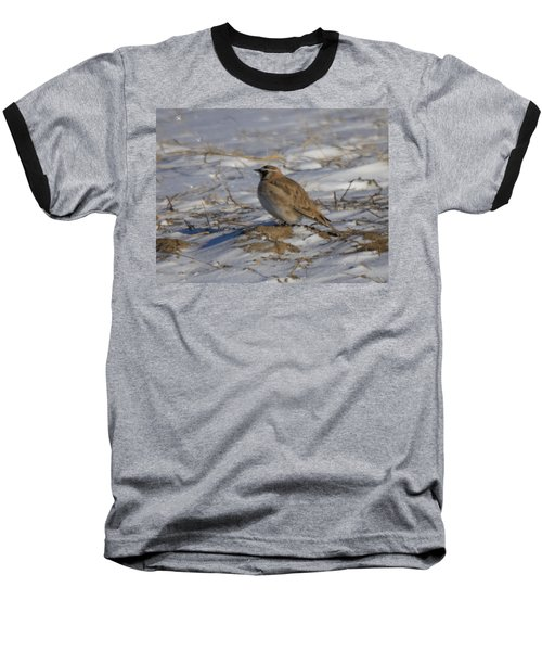 Winter Bird Baseball T-Shirt by Jeff Swan