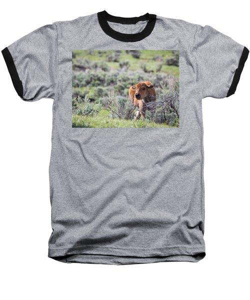 Bison Calf Baseball T-Shirt